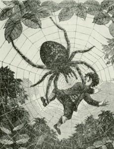 Spindelbarnet_LL